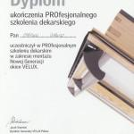dyplom-2013